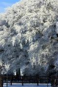 arodstown-snow